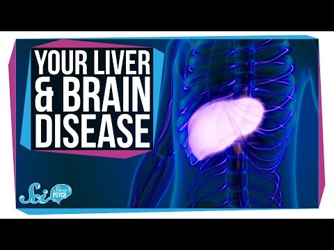 How Liver Problems Can Lead to Brain Disease
