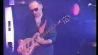 Paul Rodgers - Rollin` Stone