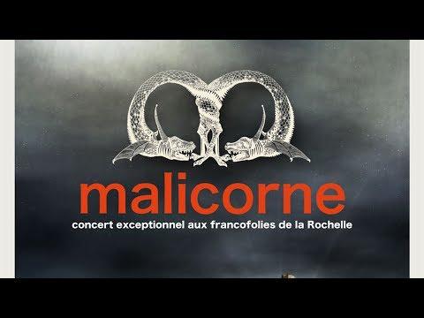 Malicorne - J'ai vu le loup, le renard et la belette (Live officiel)