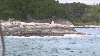 紀伊有田沖磯の『平島』です。