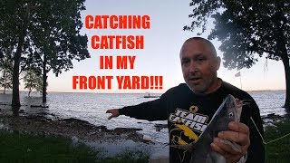 How I'm catching Catfish in my FRONT YARD!
