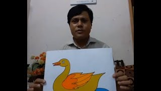 Art & Craft: How to Draw A Duck with Colour হাঁস অংকন