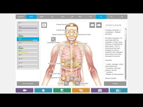 NES Health System Overview
