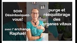 Jour 10 : Désintoxiquez-vous! Soin de purge et rééquilibrage des organes  vitaux. Avec Raphaël 🙏😇💚💚💚 - YouTube