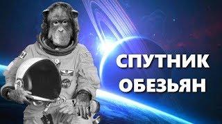 Спутник обезьян