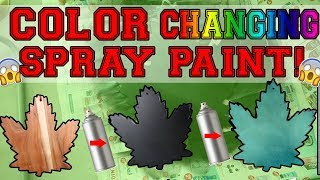 Testing Out COLOR CHANGING SPRAY PAINT?!?! | CHAMELEON Spray Paint
