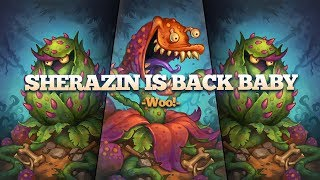 Sherazin BACK IN THE META