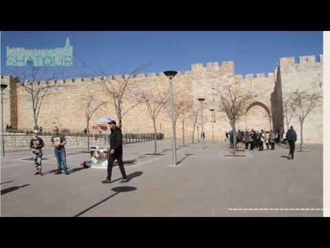 Shatour Visiting Tower of David