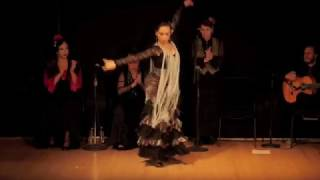 Performance in New York State Flamenco Certamen