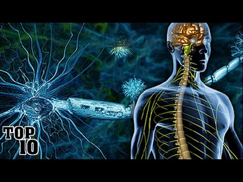 Top 10 Multiple Sclerosis Facts You Should Know