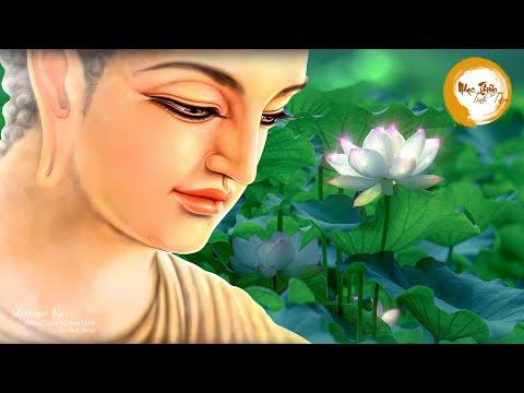 Nhạc Thiền Dễ Ngủ - Trút Bỏ Muộn Phiền Thư Thái An Lạc Ngủ Ngon - Meditation music buddha