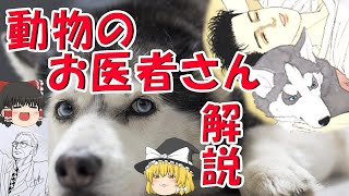 動物のお医者さん(3)