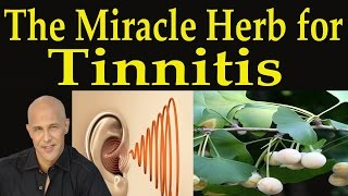The Miracle Herb for Tinnitus - Dr Mandell