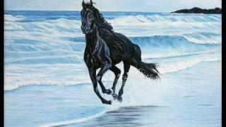 Free Spirit - Sueno Catalano