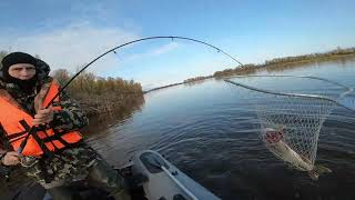 Рыбалка на щуку в октябре. Протока Камаева, Сургутский р-н, ХМАО - Югра