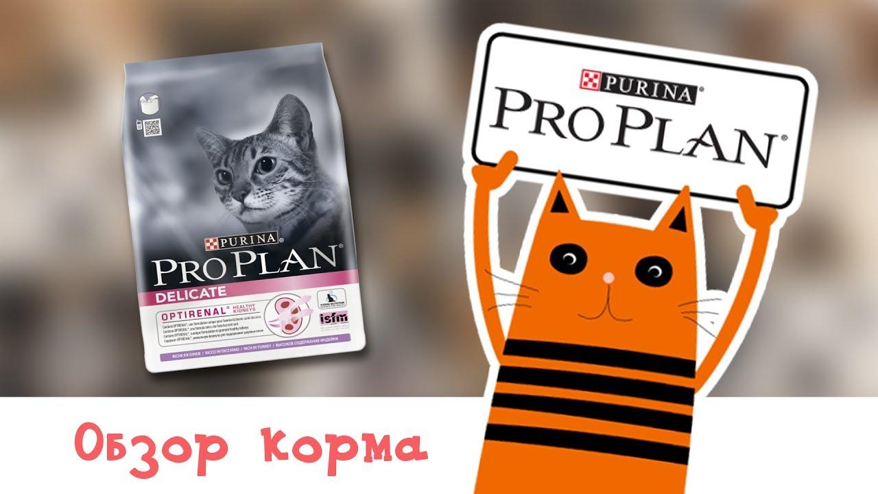 Корм для взрослых кошек Пурина Про План | Обзор корма для котов .