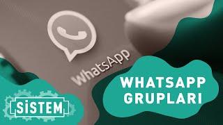 SİSTEM | Whatsapp grupları! 📱💬