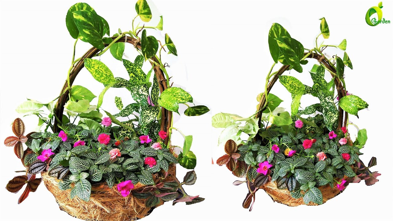 Basket planter Ideas/Planter Making From Waste Materials//ORGANIC GARDEN