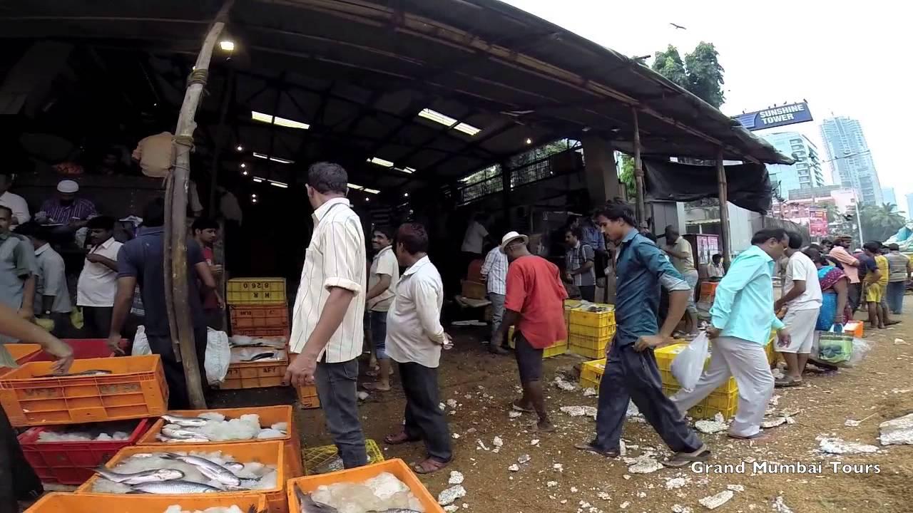 Mumbai 39 s fish market mumbai city tours youtube for City fish market