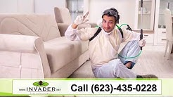 Invader Pest Management | Bed Bugs, Rats, Termites, Scorpions, Bees, Ants, Spiders | Glendale, AZ