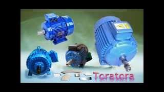 generatori a magneti permanenti brushless www.toratorashop.net 04381796937