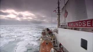 What arctic sea-ice tells us about climate change