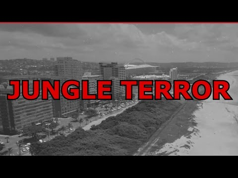 Jungle Terror Mix 2 - DJ ToDo Crazy (Jungle Terror 2016 / 2017)