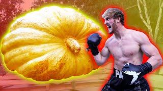Download LOGAN PAUL VS. THE WORLD'S BIGGEST PUMPKIN! Mp3 and Videos