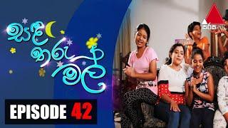 සඳ තරු මල් | Sanda Tharu Mal | Episode 42 | Sirasa TV Thumbnail