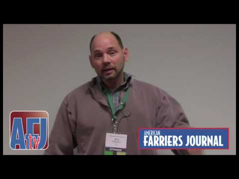 Farrier Quick Takes (Steve Stanley): Areas Of Focus In Shoeing Careers