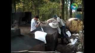 Белорусские самогонщики уходят из лесов