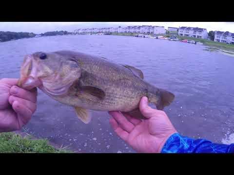 Big Bass right before a BIG STORM!!!
