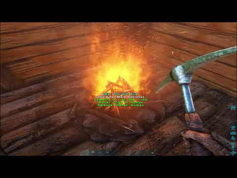 Ark How To Cook Meat (Quick Tips)