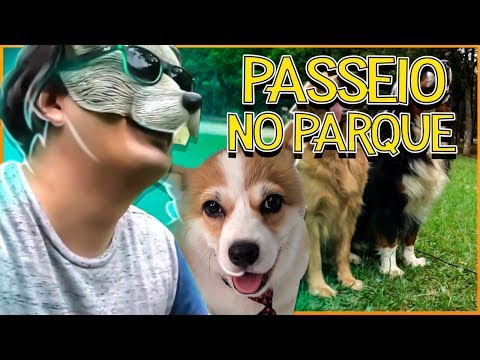 PRIMEIRO PASSEIO DO TAMTAM NO PARQUE 🦊