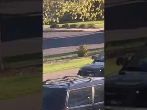 Eyewitness video of May 7 officer-involved shooting