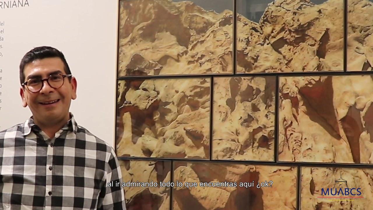 NOCHE EN EL MUSEO VIRTUAL | Víctor Cerecer.