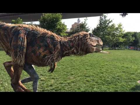 Baby T-Rex Takes Over Brooklyn Bridge Park