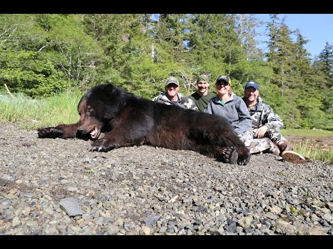 2016 Alaska Black Bear Hunt
