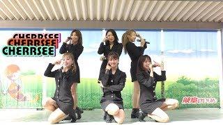 9月8日、開設69周年岐阜競輪GⅢ「長良川鵜飼カップ」(第9R発売中)での...