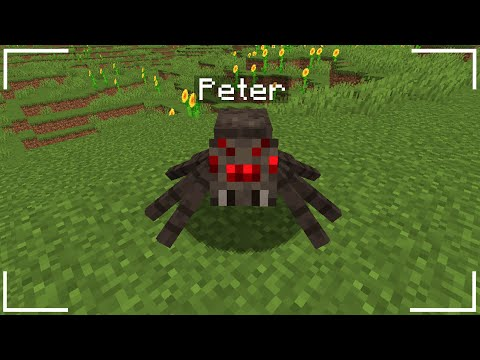 i-tamed-a-spider-in-minecraft