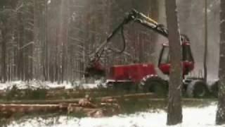 ścinka drzew.