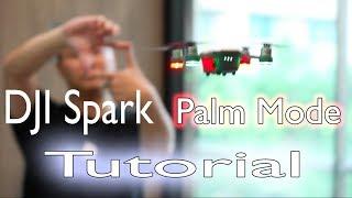 DJI Spark Palm Mode Tutorial