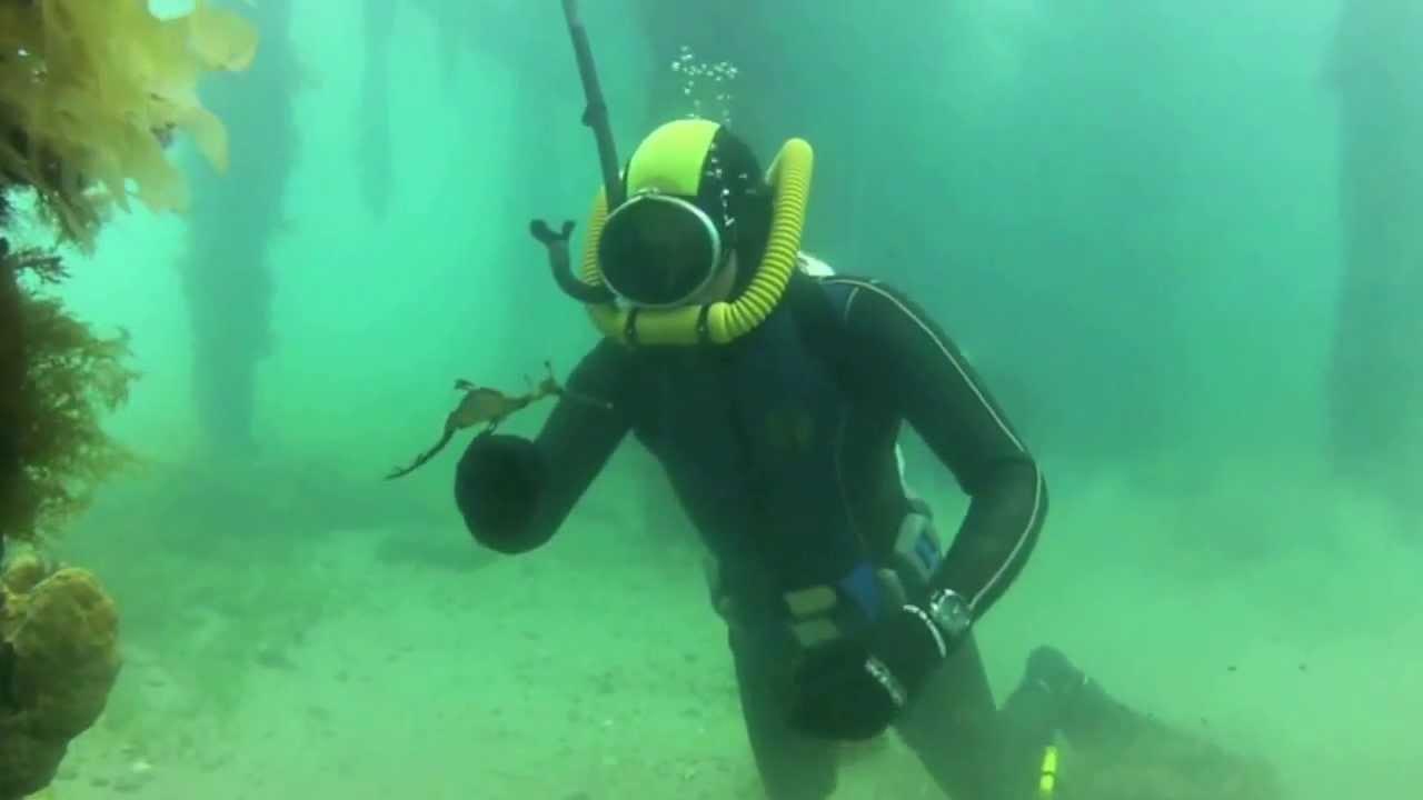 Vintage SCUBA Dive At Flinders Pier, Melbourne, Australia