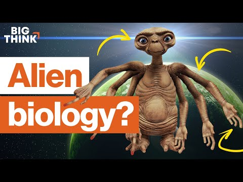 The biology of aliens: How much do we know? | Michio Kaku, E.O. Wilson, & more | Big Think