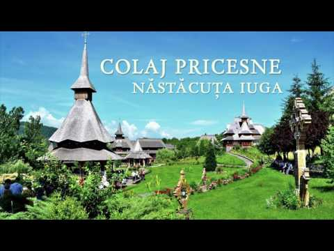 COLAJ PRICESNE- Nastacuta Iuga