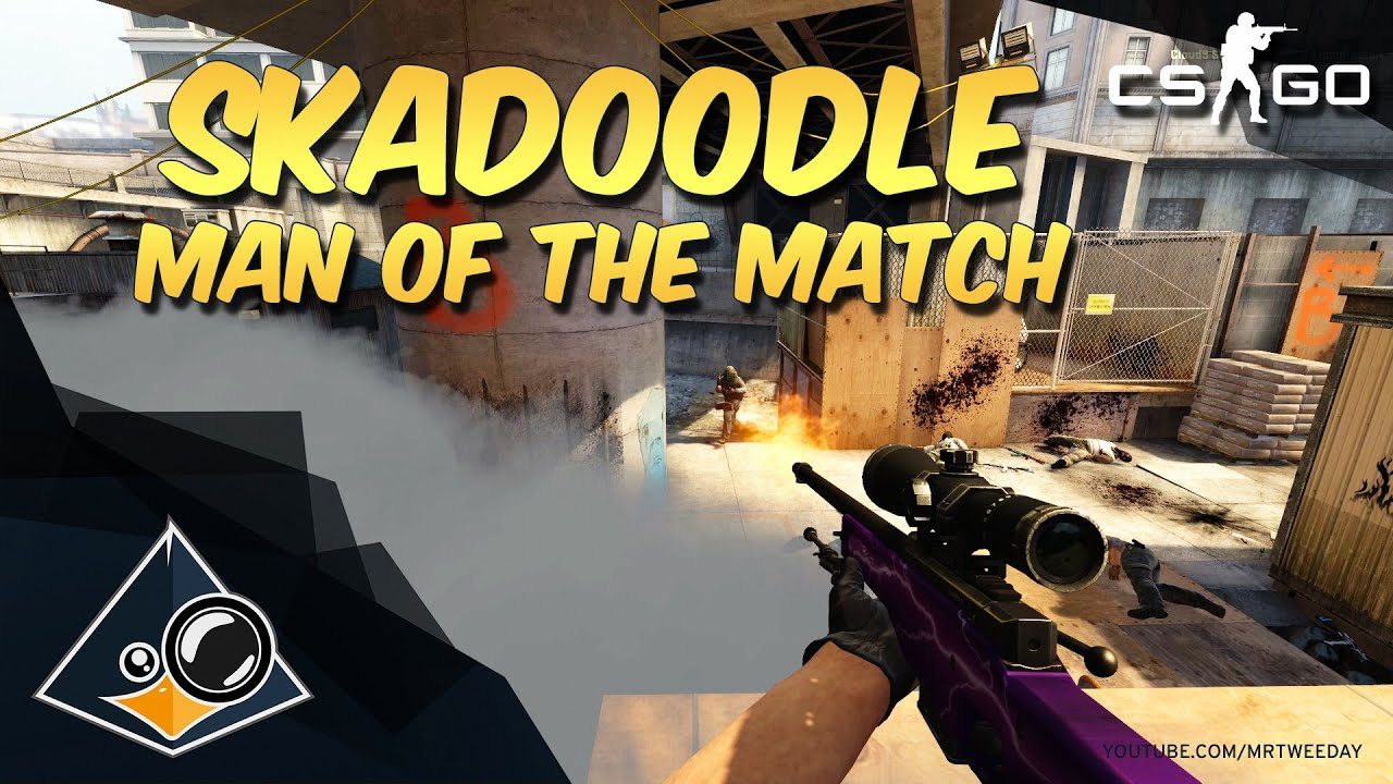 Skadoodle - Liquipedia Counter-Strike Wiki