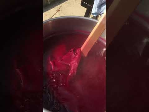 Dyeing with Cochineal by Kathleen O'Grady