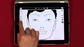 Navigating Face Chart Pro