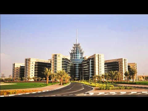 Dubai Silicon Oasis Flats or Apartments for Sale and Rent - Binayah Real Estate