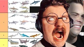 A Shark Tier List That's Better Than Cody & Ko's